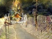 ひらかたパーク「光の遊園地」の写真