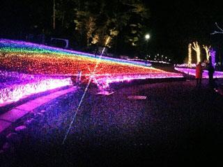 奥河内イルミナージュの写真1