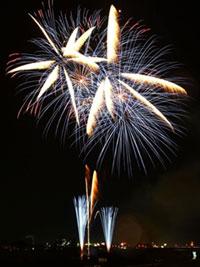 鳥取しゃんしゃん祭 第66回市民納涼花火大会の写真