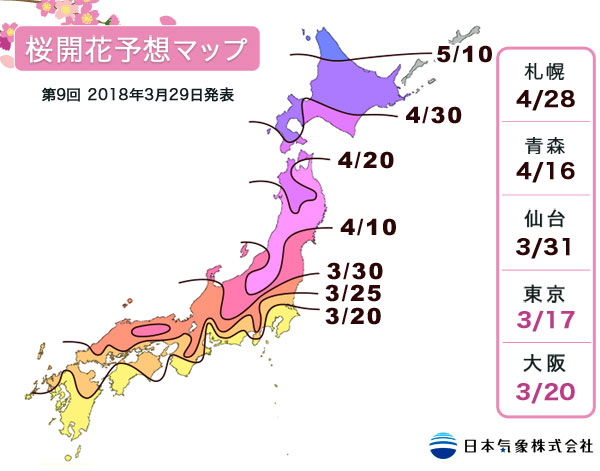 開花 桜 予想 年 2020