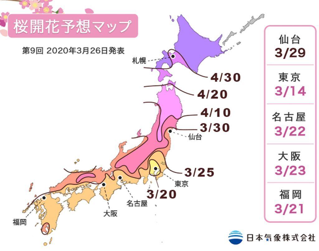 年 開花 2020 予想 桜