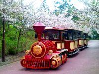 横浜・八景島シーパラダイスの桜