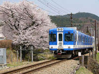 富士急行線 三つ峠駅の桜