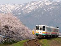 山形鉄道フラワー長井線の桜