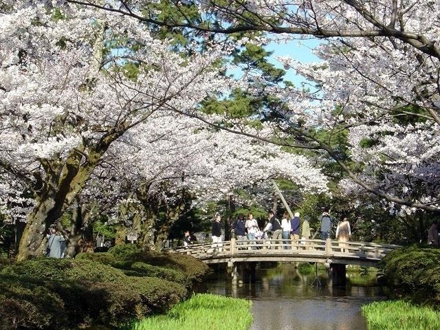 https://sp.jorudan.co.jp/hanami/images/spot/640/125602_2.jpg