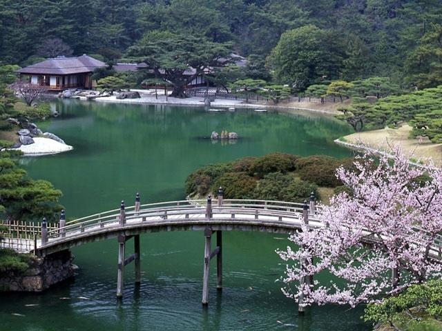 特別名勝 栗林公園の桜|花見特...