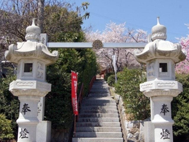 成田山聖代寺の桜|花見特集2020