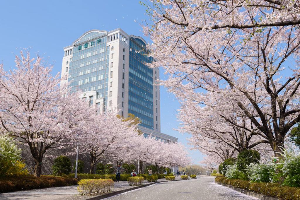 「創価大学(東京都八王子市丹木町1-236」の画像検索結果