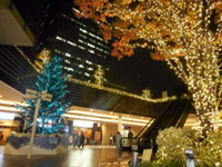 Solacity Winter Illuminationsの写真