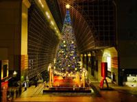 京都駅ビル クリスマスイルミネーション2017