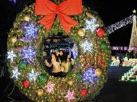 広島市植物公園 花と光のページェントの写真