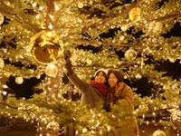軽井沢星野エリアのクリスマス2019