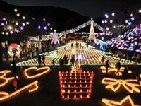 広島市植物公園 花と光のページェント ~クリスマス夜間開園~