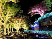 光の庭園inグラバー園