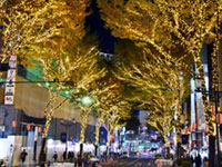 SHIBUYA WINTER ILLUMINATION HELLO neo SHIBUYAの写真