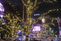 SHIBUYA WINTER ILLUMINATIONの写真