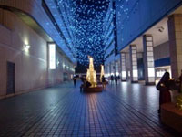 横浜駅東口はまテラス 星降るテラス~星に願いを~