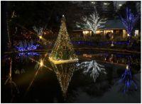 京王フローラルガーデン アンジェ「アンジェのクリスマス」イルミネーション&キャンドルナイト