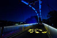 飯能河原「割岩橋」ライトアップ