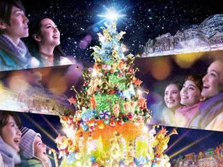 ユニバーサル・ワンダー・クリスマス写真1