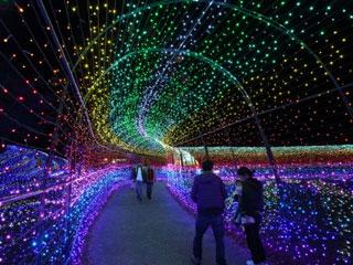 東京ドイツ村 ウインターイルミネーション 「飛び出せ!ピコピコ!ドリームワールド」の写真4