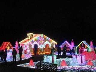 木曽三川公園センター・冬の光物語写真1