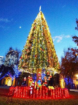 ノリタケの森 クリスマスガーデン写真1