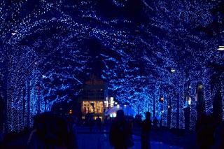 青の洞窟 SHIBUYA写真2