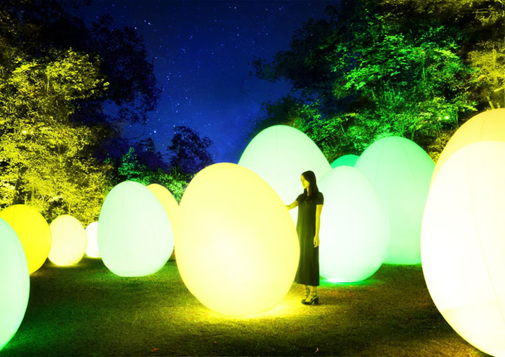 lightbox チームラボ 森と湖の光の祭写真1