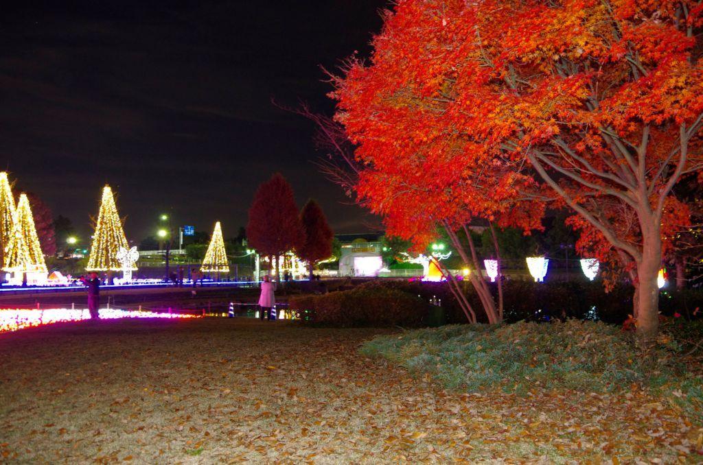 公園 木曽 三川