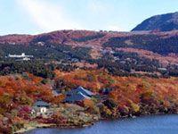神奈川県の紅葉名所|紅葉情報2017