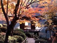 西之丸庭園(紅葉渓庭園)の紅葉