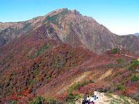 谷川岳・天神平の紅葉
