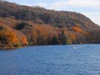 芦ノ湖の紅葉