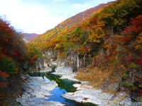 The Autumn Leaves of Ryuokyo Canyon