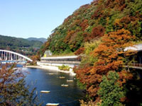 県立相模湖公園の紅葉
