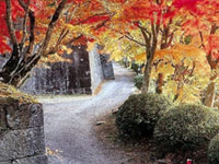 The Autumn Leaves of Oka Castle Ruins