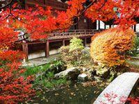 京都山科 毘沙門堂の紅葉