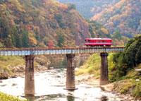 長良川鉄道の紅葉