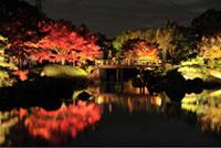 大仙公園 日本庭園の紅葉