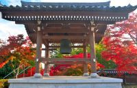 天覧山・能仁寺周辺の紅葉