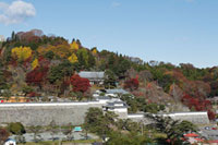 県立霞ヶ城公園(国指定史跡 二本松城跡)の紅葉