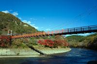 矢祭山公園の紅葉