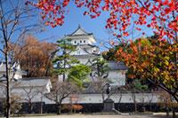 大垣城の紅葉