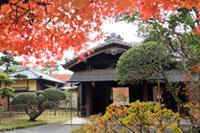 旧堀田邸の紅葉