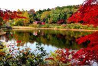 ムーミンバレーパーク・メッツァビレッジの紅葉