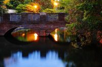 仙台堀川公園の紅葉