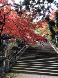 大雄山最乗寺の紅葉