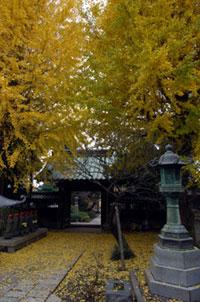 常立寺の紅葉