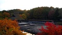 古牧温泉 渋沢公園の紅葉